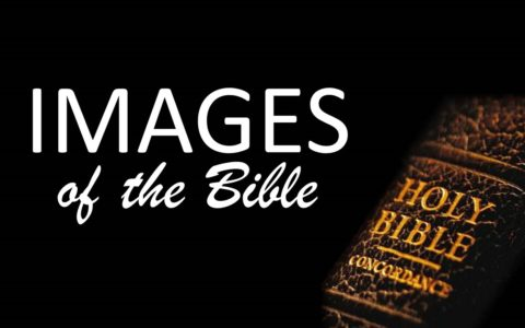 Images of the Bible